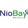 Niobay Metals Inc.
