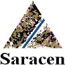 Saracen Mineral Holdings Ltd.